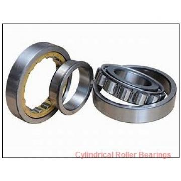 2.559 Inch | 65 Millimeter x 4.724 Inch | 120 Millimeter x 1.5 Inch | 38.1 Millimeter  LINK BELT MA5213TV  Cylindrical Roller Bearings